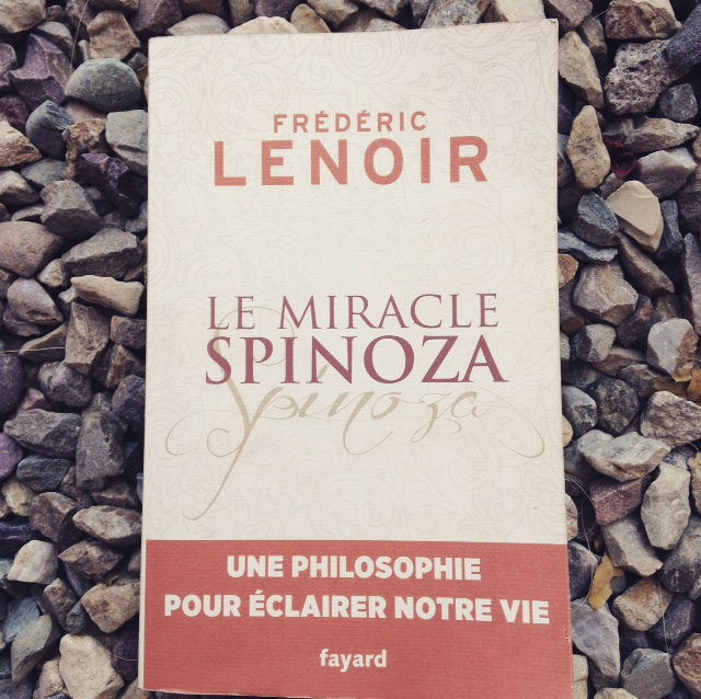 le_miracle-spinoza